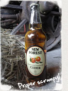 New Forest Traditional Sparkling Cider Bottle