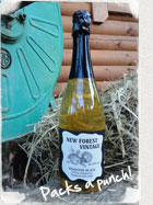 New Forest Champagne Methode Cider Bottle